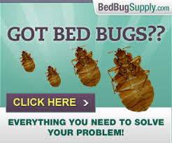 Bed bug encasements for mattresses and box springs