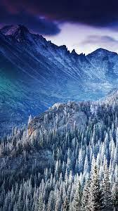 Winter Mountain Blue Woods Tree Nature ...