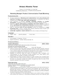Marketing Manager Resume Example Marketing Project Manager Resume ...