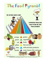 Food Group Colors Of The Food Pyramid Color Guide