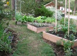 Small Kitchen Garden Similiar Kitchen Garden Keywords