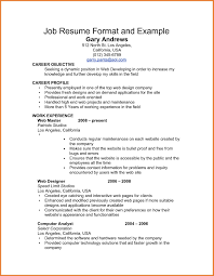 Information Technology Combination Resume Sample Inspirationa ...