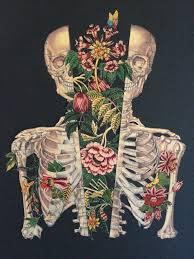 Épinglé par Aaron Batey sur Illustrations   Art à thème anatomie, Crânes  artistiques, Art du collage