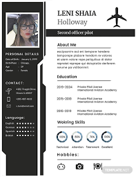 Modern Pilot Resume 22 Free Creative Resume Templates Download Ready Made Template Net