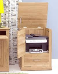 Hidden Printer Cabinet Mobel Printer Computer Storage Cabinet Cupboard Solid Oak Office
