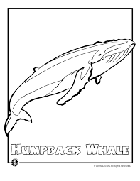 Endangered Animals Coloring Pages: Animals from North America, the ...