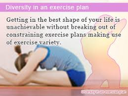 diversity in an exercise plan