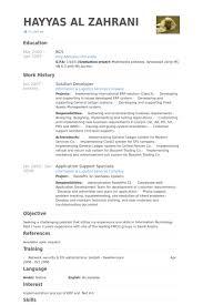 ... Chic Idea Sharepoint Developer Resume 11 Solution Developer Resume  Samples ...
