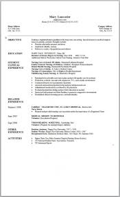 17 Resume Templates Free Download Word 2007 Resume Template Ideas