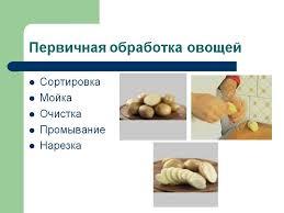 Скачать Курсовая переработки плодов и овощей Курсовая переработки плодов и овощей подробнее