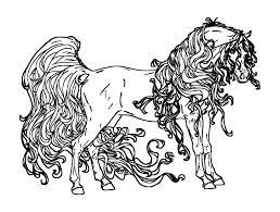 Paarden Kleurplaat Nieuw Coloring For Adults Kleuren Voor