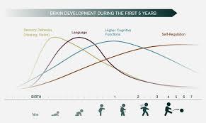 Child Brain Development Age 6 3 4 Ages 0 Mind 7