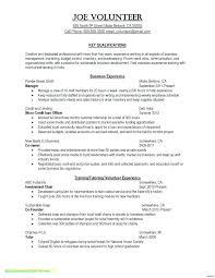 Project Executive Summary Template Advmobile Info