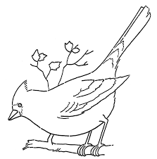 Line Art Coloring Page Cardinal On