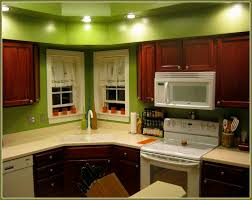 dark green painted kitchen cabinets. Colors To Paint Kitchen With Dark Cabinets Home Design Ideas Green Painted I