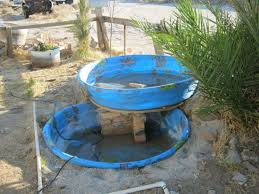 Diy Pool Waterfall Pond How To Build An Above Ground Fish Pond Above Ground Pond