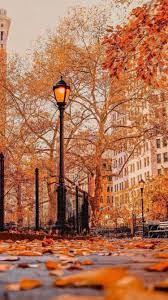 Autumn scenery, Autumn photography ...