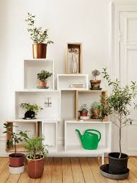 Small Picture 99 Great Ideas to display Houseplants Indoor Plants Decoration