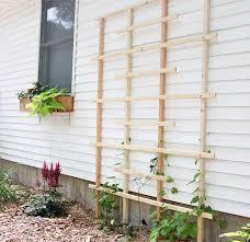 Small Picture Garden Trellis Ideas Garden Design Ideas
