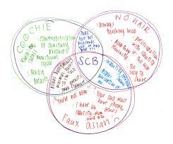 Girl Venn Diagram Diary Of A Bald Girl A Venn Diagram Of Cluttered Thought