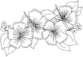 Spring Flower Coloring Pages Free Related Post Coloring Pages For