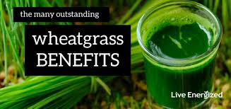 wheatgr benefits how to use