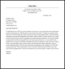 Cio Cover Letter Sample Ceo Cover Letter Magdalene Project Org