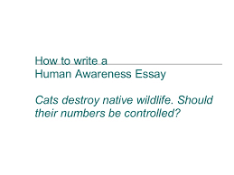 how to write a human awareness essay