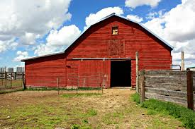 farm barn. Farm Barn For Modern Concept Silver Sage Behind The Beef Calgary Farmers
