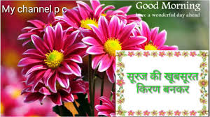 Hd Exclusive Good Morning Happy Sunday Quotes In Hindi Mesgulsinyali