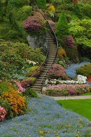 Small Picture Ideas For Beautiful Gardens