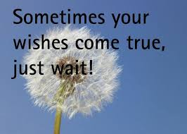 Wishes Quotes Awesome Wishes Quotes Sometimes Your Wishes Come True Just Wait