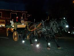 Image result for horse drawn wagon frederick