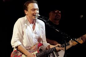 David Cassidy suffers organ failure, remains hospitalized in ...