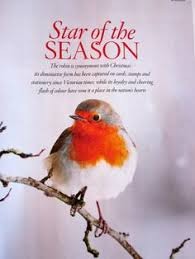 Image result for christmas robin red breast bbc