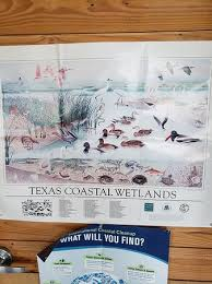 Matagorda Bay Nature Park 2019 All You Need To Know Before