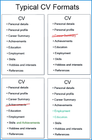 Different Formats For Resumes 14 Examples Of CV Structures And Layouts