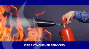 Wormald Fire Extinguisher Chart Fire System Services Fire Safety Equipment Consultants