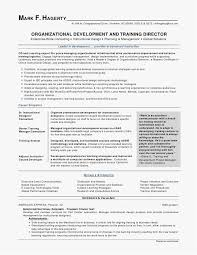 Best Professional Resume Template New 48 Example Of Professional Resume 48 Best Resume Templates