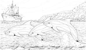 Small Picture Coloring Pages Of Dolphins Coloring Coloring Pages