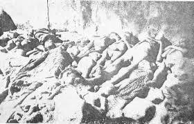 n genocide