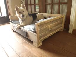 8 DIY Pallet Beds For Dogs