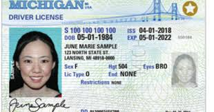 Michigan Be Ids Flights To Domestic Accepted Issue New That Will On