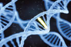 Genome Editing The Transformative Power Of Genome Editing