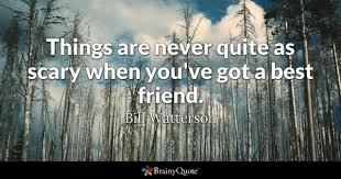 True Friends Quotes Inspiration Best Friend Quotes BrainyQuote