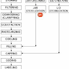 Honey Processing Flow Chart Process Flow Diagram Of Natural Honey Processing Download
