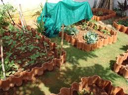 Organic Kitchen Gardening Growing Round Radish Organic Kitchen Gardening And My Personal