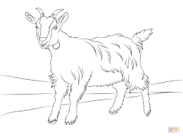 Small Picture Cute Goat Coloring Page Free Printable Coloring Pages Coloring