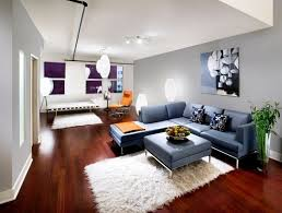 blue couches living rooms minimalist. Sofa Blue White Carpets Plant Corner Walls Couches Living Rooms Minimalist