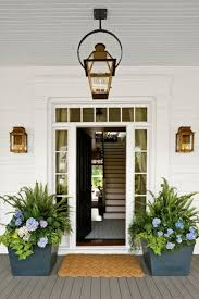 the front door128 best p l a n t s images on Pinterest  Doors Front entry and